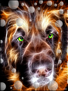 Leonberger Prints - Green Eyes Bubbles Leonberger  Print by Daniel Janda