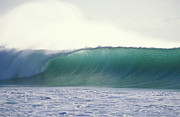 Waves Energy Prints - Green Feather Print by Sean Davey