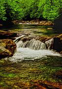 Dave Bosse - Green Flow