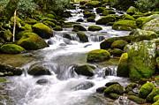 Frozen in Time Fine Art Photography - Green Flowing Stream