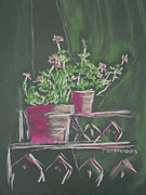 Magazine Pastels - Green Geraniums by Marcia Meade