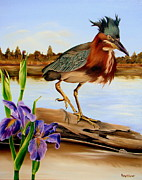 Waterfowl Paintings - Green Heron Dance by Phyllis Beiser