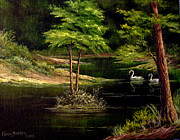 Swans... Paintings - Green lake by Karen Barton