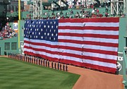 Fenway Painting Metal Prints - Green monsta pride Metal Print by Bruce Carpenter