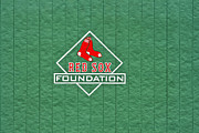 Red Sox Metal Prints - Green Monster Metal Print by Dennis Coates