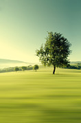 Haze Digital Art Prints - Green Morning Print by Martin Smolak