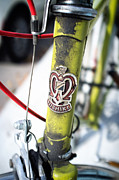 Cycling Art Metal Prints - Green Nishiki Bicycle Metal Print by Tanya Harrison