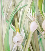 Shades Of Green Posters - Green Onions Poster by Debi Pople