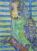 Cage Paintings - Green Parakeet by Kathy Marrs Chandler