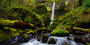 Waterfalls Posters - Green Seasons Poster by Chad Dutson