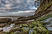 Coastline Posters - Green Stone Shore Poster by Jon Glaser