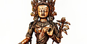 Tibetan Buddhism Photo Metal Prints - Green Tara Metal Print by Tim Gainey