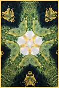 Symmetrical Design Prints - Green Thing Print by Barbara Snyder