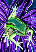 Nick Gustafson - Green Tree Frog on Purple Flower
