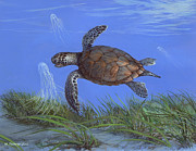 ACE Coinage painting by Michael Rothman - Green Turtle