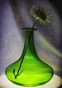Kathi Mirto - Green Vase and Flower