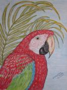 Talking Painting Prints - Green Winged Macaw Print by Kathy Marrs Chandler