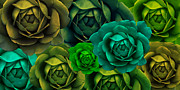 Green Florals Prints - Green with Envy Cabbage Rose Flowers Print by Jennie Marie Schell
