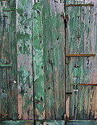 Hinges Posters - Green Wooden Weathered Barn Door  Poster by David Letts