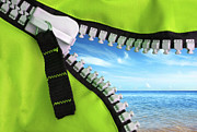 Zipper Framed Prints - Green Zipper Framed Print by Carlos Caetano