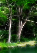 Cypress Trees Digital Art Posters - Greenbelt Poster by Wendy J St Christopher