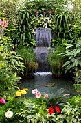 Water Feature Posters - Greenhouse Garden Waterfall Poster by Carol Groenen