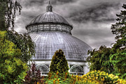 Grey Clouds Posters - Greenhouse - The Observatory Poster by Mike Savad