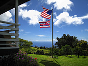 Flag Pole Posters - Greenwell Kona Coffee Farm Poster by Daniel Hagerman