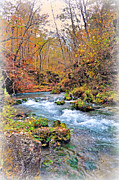 Greer Spring In Fall Print by Marty Koch