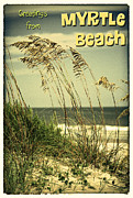 Sea Oats Digital Art Prints - Greetings from Myrtle Beach Print by Gary Cain