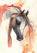 White Horse Painting Originals - Grey arabian horse 04 11 2013 by Angel  Tarantella