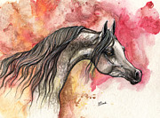 Drawing Painting Originals - Grey arabian horse on red background 2013 11 17  by Angel  Tarantella