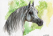 Horse Drawing Framed Prints - Grey Arabian Horse Watercolor Painting 2 Framed Print by Angel  Tarantella