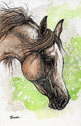 Drawing Painting Originals - Grey Arabian Horse Watercolor Painting 4 by Angel  Tarantella