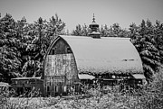 Snow On Barn Posters - Grey Day Poster by Paul Freidlund