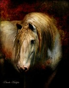 Horse Portrait Art - Grey Dignity by Dorota Kudyba