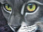 Gray Cat Paintings - Grey Lady by Darren Robinson