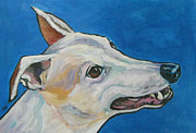 Greyhound Prints - Greyhound in Profile - Chinook Print by Janet Burt