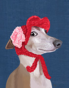 Canine Prints Digital Art Prints - GreyHound Red Knitted Hat Print by Kelly McLaughlan