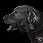 Golden Retriever Mixed Media - Greyscale Golden Retriever - 4047 F by James Ahn