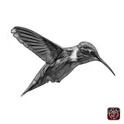 Animal Lover Digital Art - Greyscale Hummingbird - 2054 F S by James Ahn