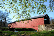 Berks County Prints - Griesemers Covered Bridge Print by Bill Cannon