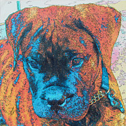 Puppies Mixed Media - Grimace by Judith Rothenstein-Putzer