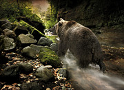 Roy McPeak - Grizzly Creek