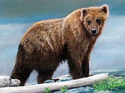 Wildlife Pastels - Grizzly by Karen Cade