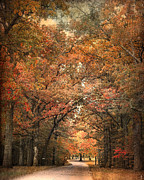 Autumn Landscapes Framed Prints - Grove of Memories Framed Print by Jai Johnson