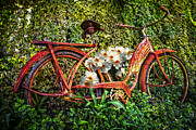 Bicycle  Art - Growing in the Garden by Debra and Dave Vanderlaan