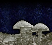 Blue Mushrooms Posters - Growth In Blue Darkness Poster by Michael Hurwitz