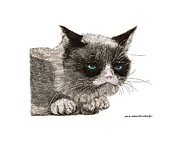 Pen And Ink Drawing Prints - Grumpy Pussy Cat Print by Jack Pumphrey