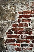 Grunge Brick Wall Print by Elena Elisseeva
